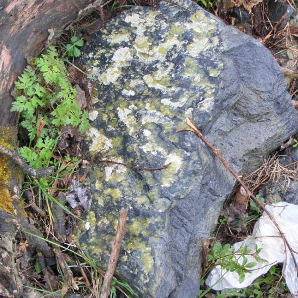 glyba zmeevik1 600x600 - Глыба Змеевик, серо-зелёная